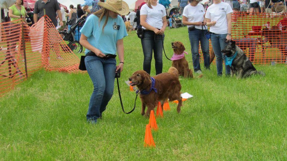 Mounds Pet Food Dog Fest