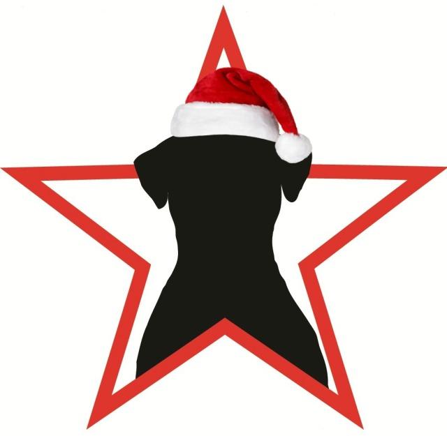 logo-santa-hat-2